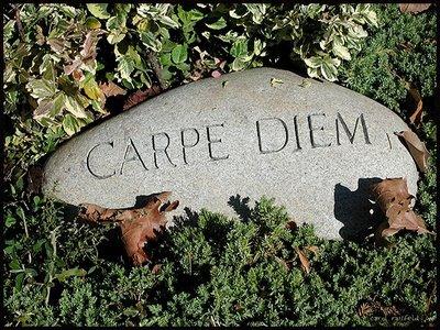 20080502163558-carpe-2520diem-1-.jpg